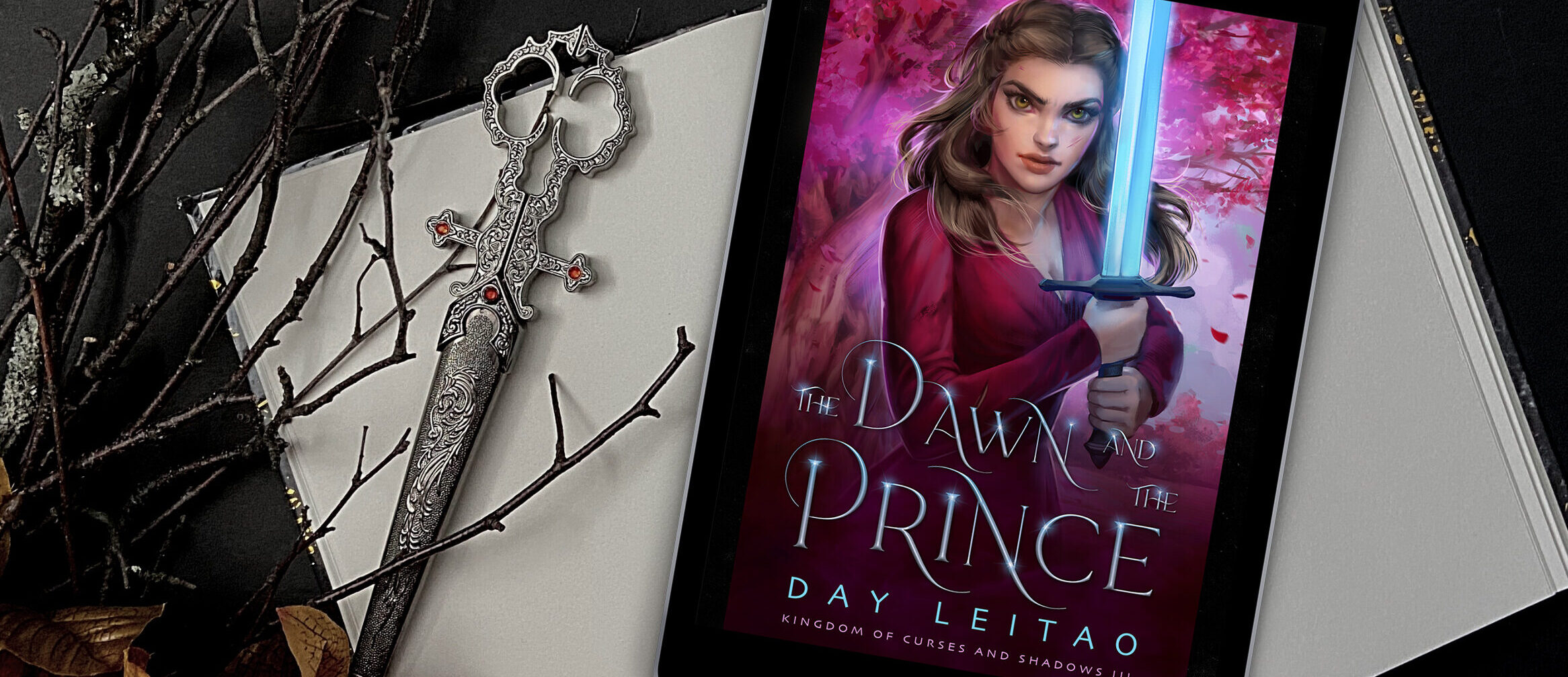 The Dawn and the Prince Cover Reveal + giveaway
