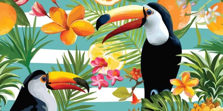 Seamless Tropical Fruits and Toucan Pattern in Vector. Pomegrana