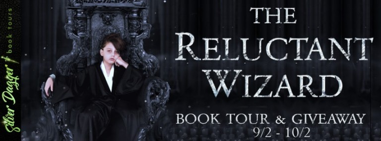 the reluctant wizard banner